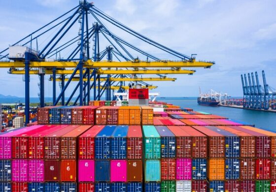 بعد ارتفاع أسعار الوقود هل ستضع مصر سقفاً لأسعار الشحن البحري ؟